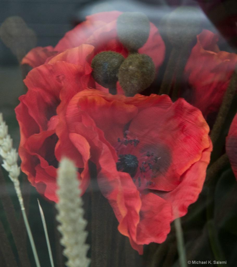 Kinsale Window Poppies