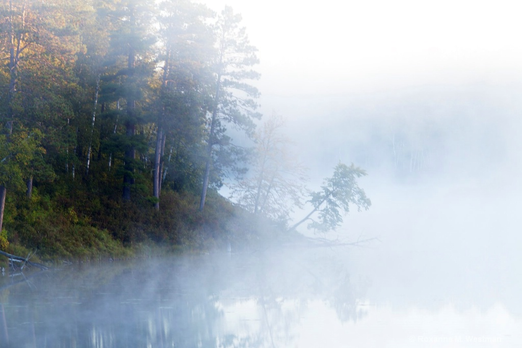 Foggy Fall morning in Itasca state park, MN