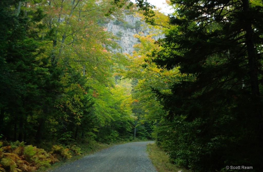 Bar Harbor.2002.Eagle Lake Carriage Road in Fall
