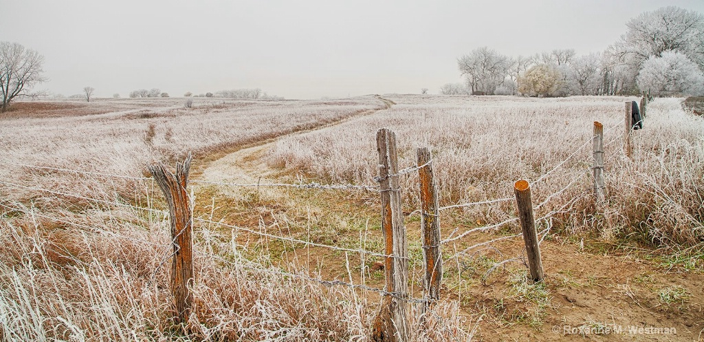 North Dakota fenceline in hoarfrost