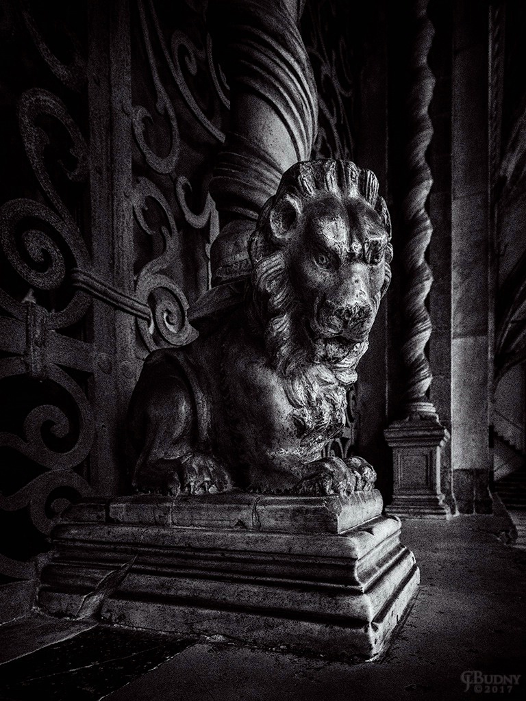 A Lion of Florence