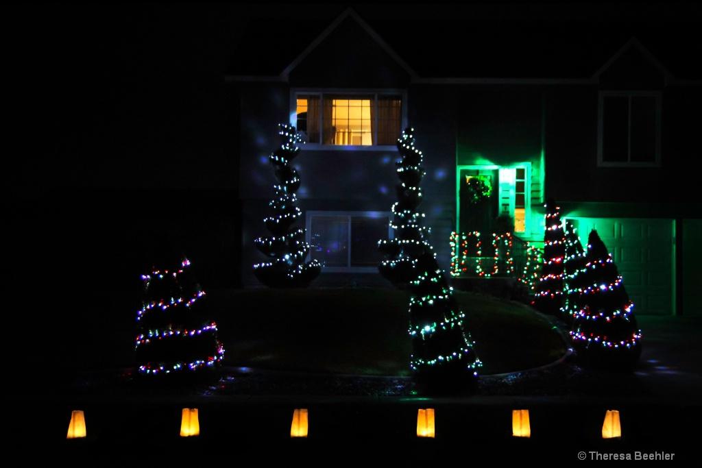 Christmas Lights - Trees
