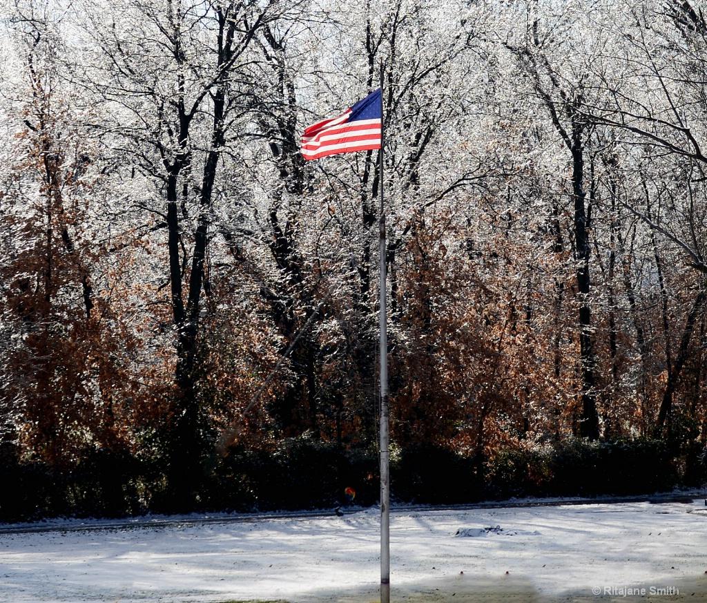 USA flag and ice