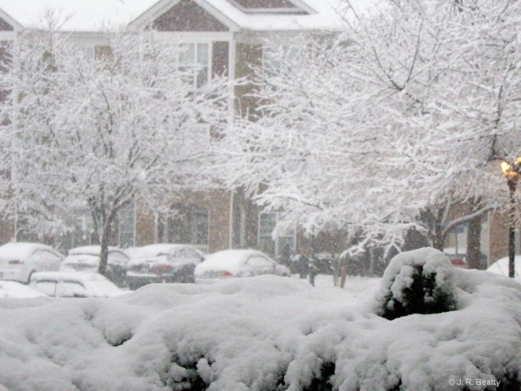 Snow Sunami