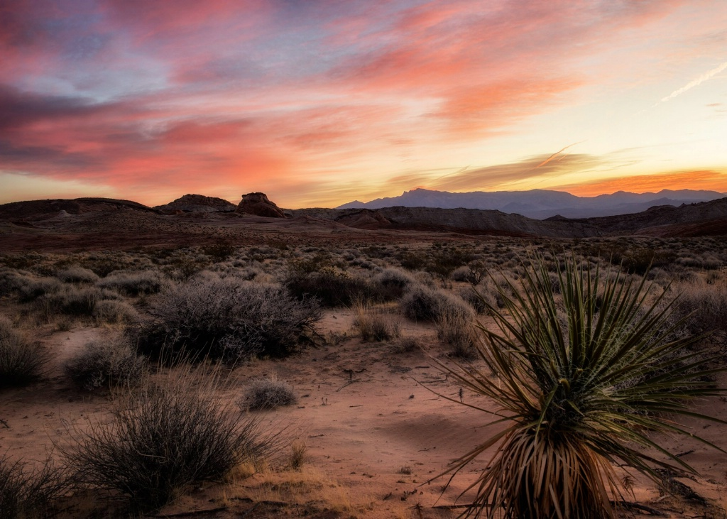 Painted Desert Sky