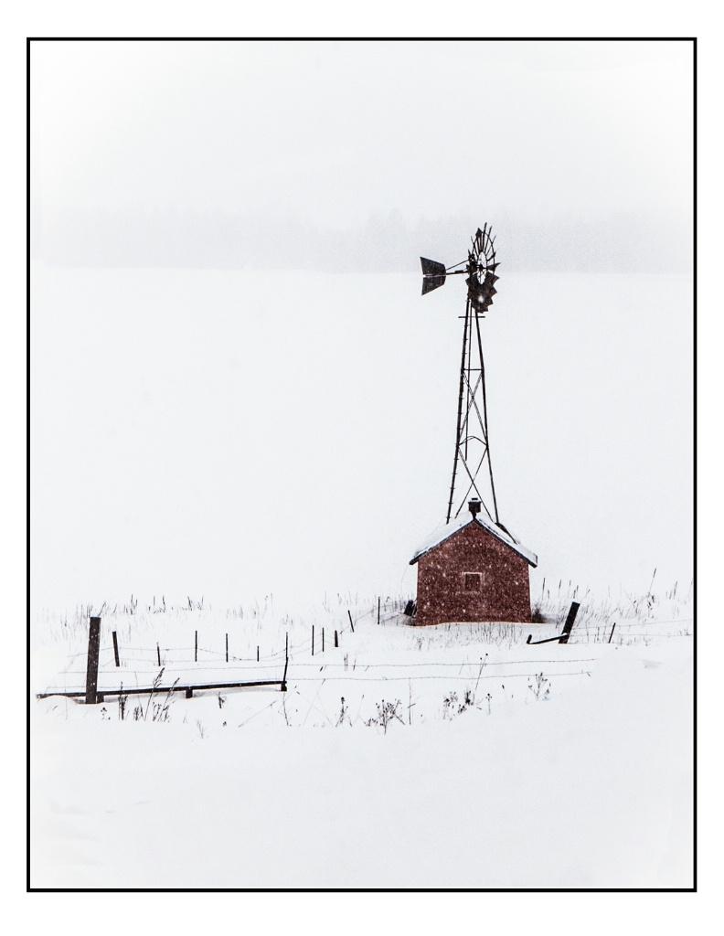 Snowy Day in Montana