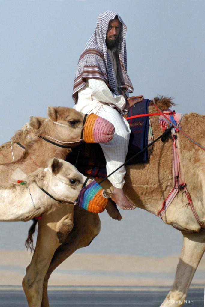 The Camel Jockey