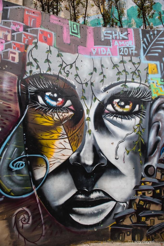 Street Art # 6-  Communa 13