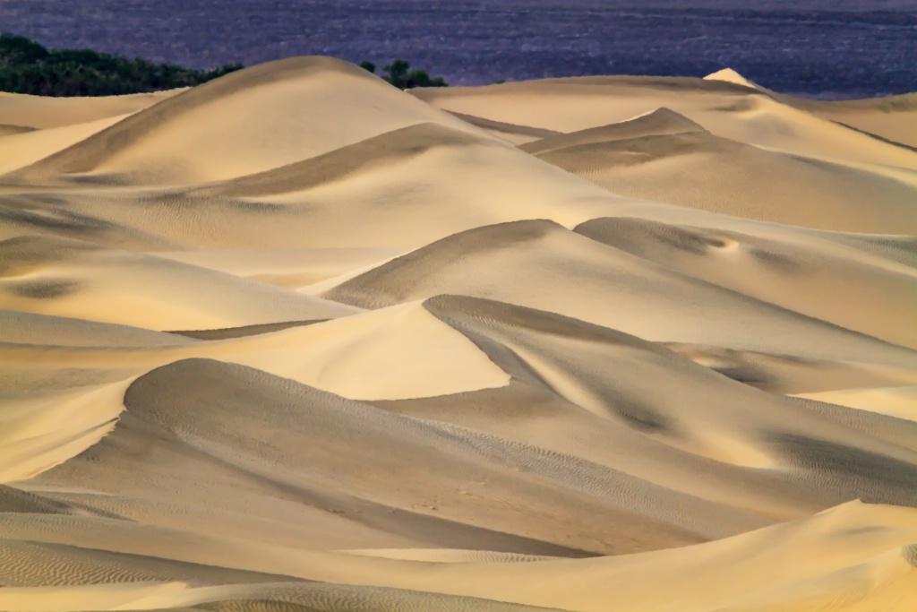 Mesquite Flat Sand Dunes  4176