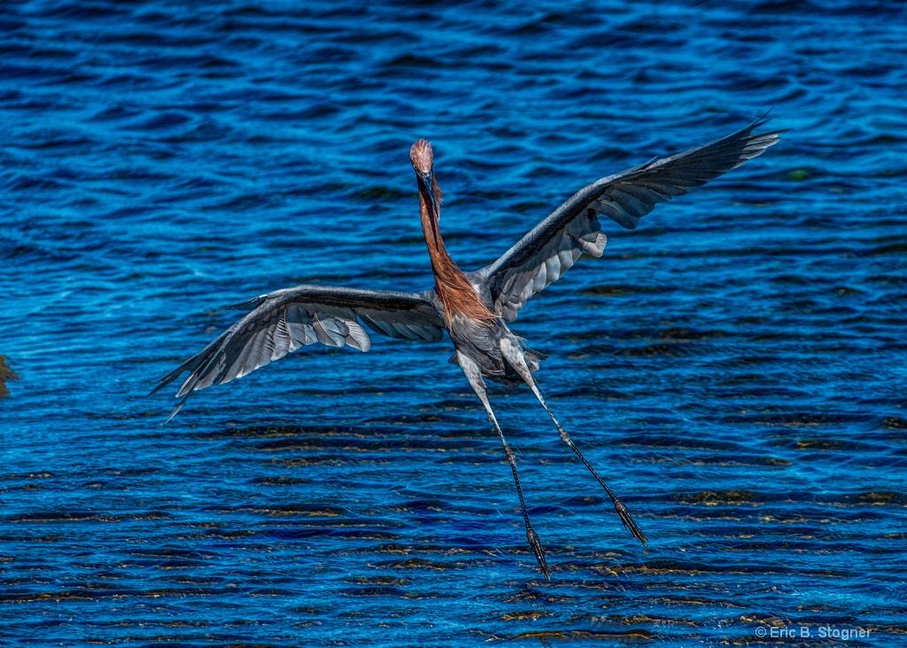 Water Landing.