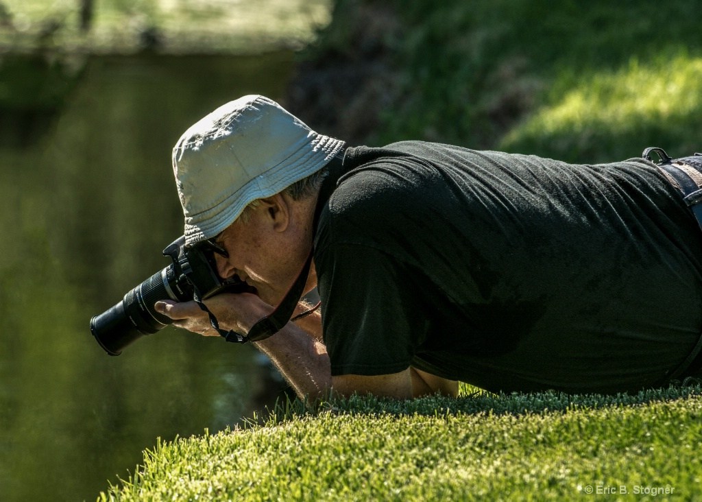 local Photographer.