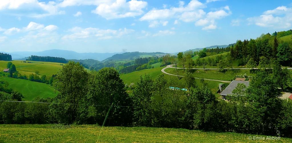 Black Forest near St. Margen
