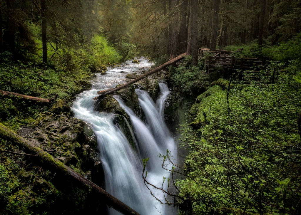 Misty Morning at Sol Duc Falls