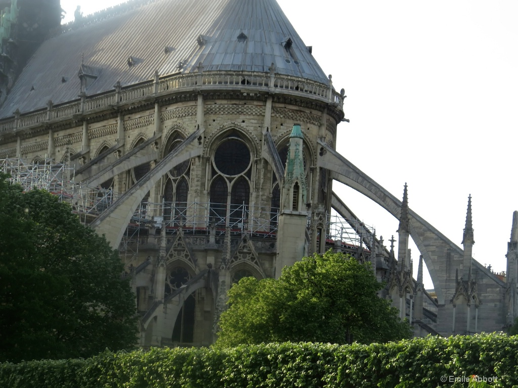 Notre Dame Flying Buttress