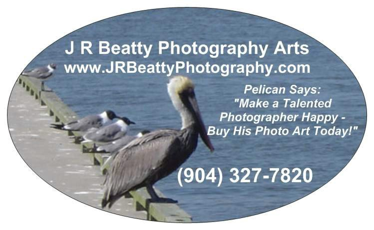 PELICAN BUMPER-WINDOW STICKER-BOOKMARK $10