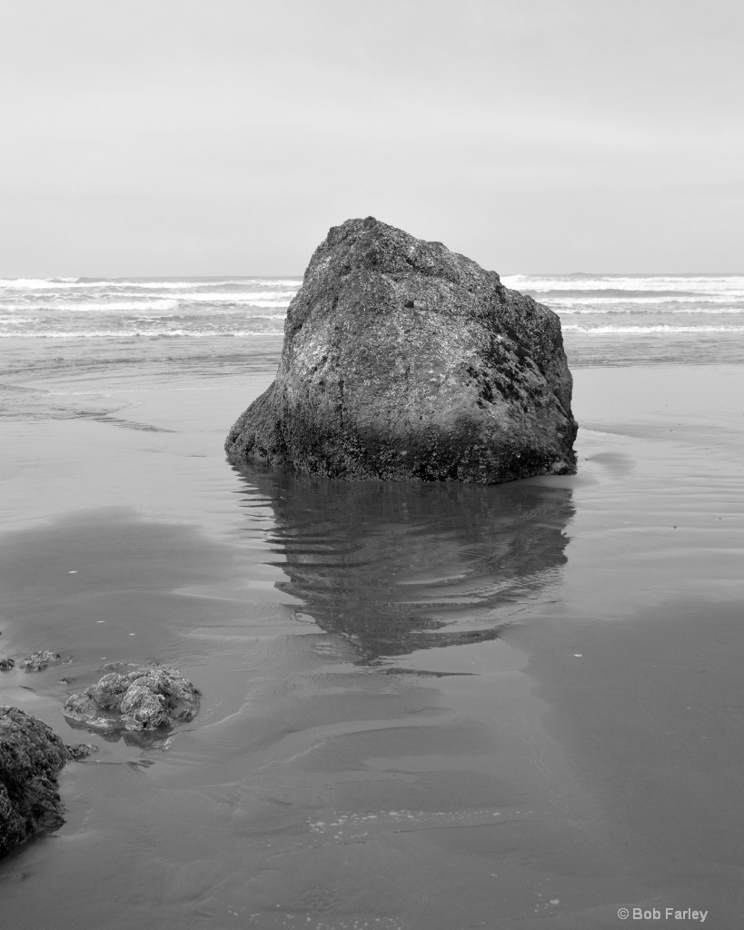 Ruby Beach solo rock black and white