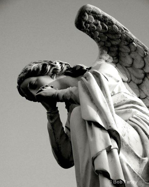 angel in woodlawn