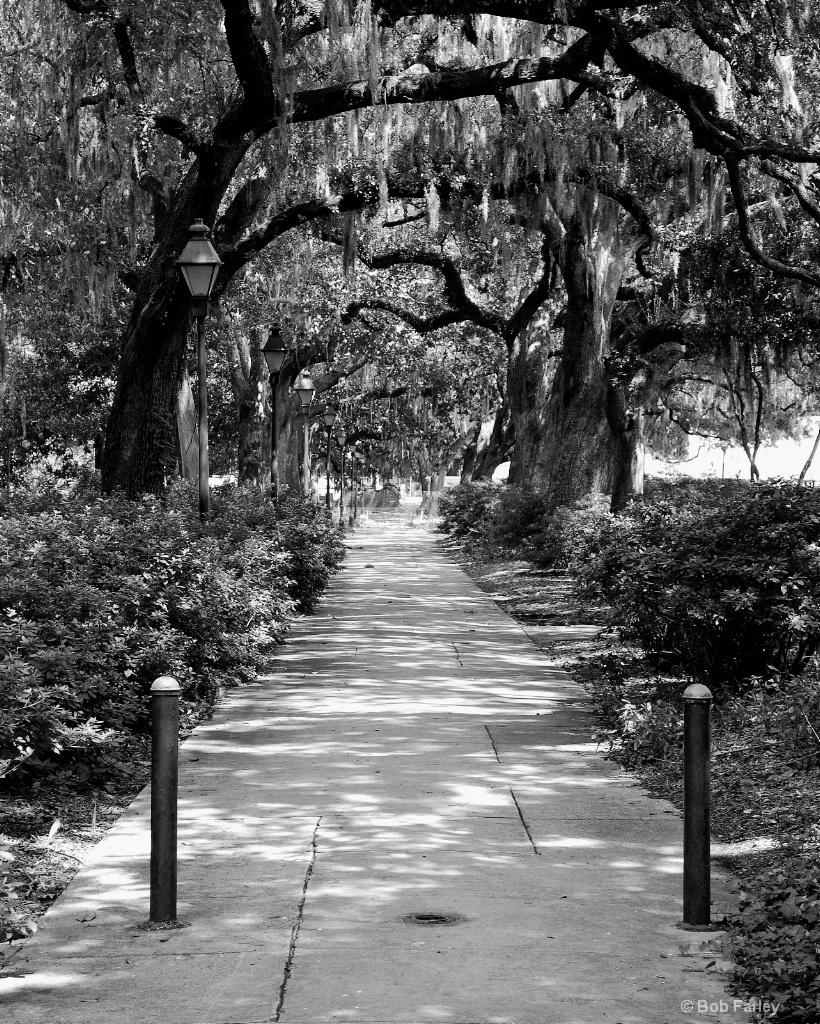 forsythe park bw