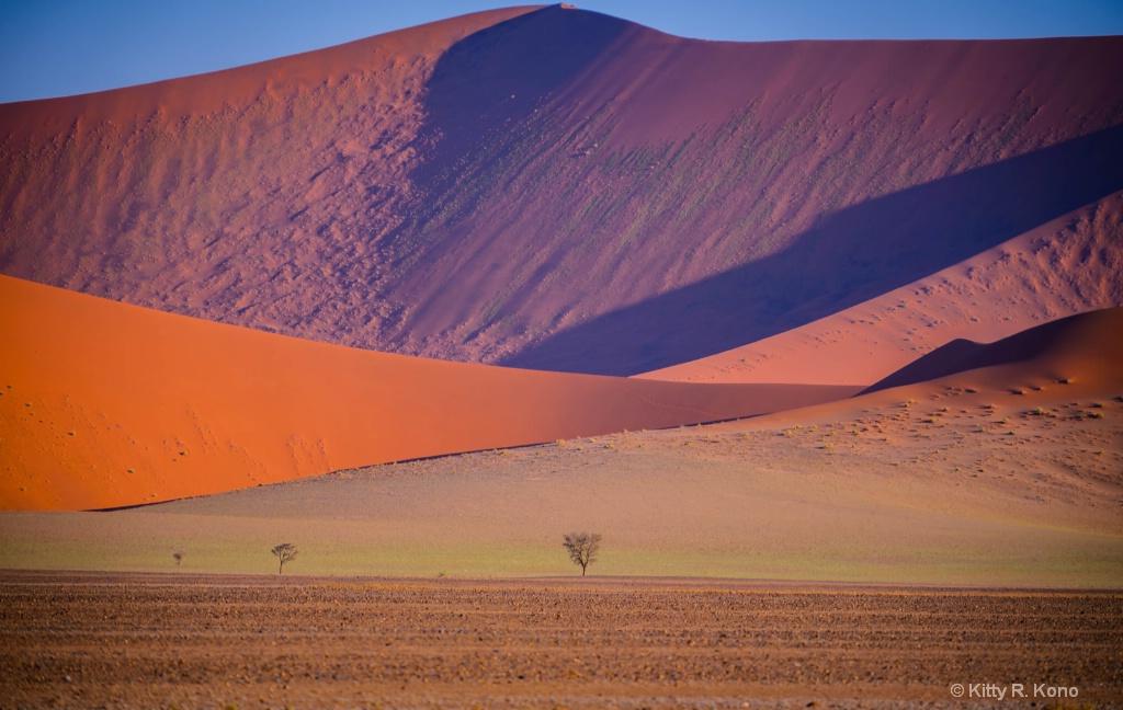 Namibian Sand Dunes