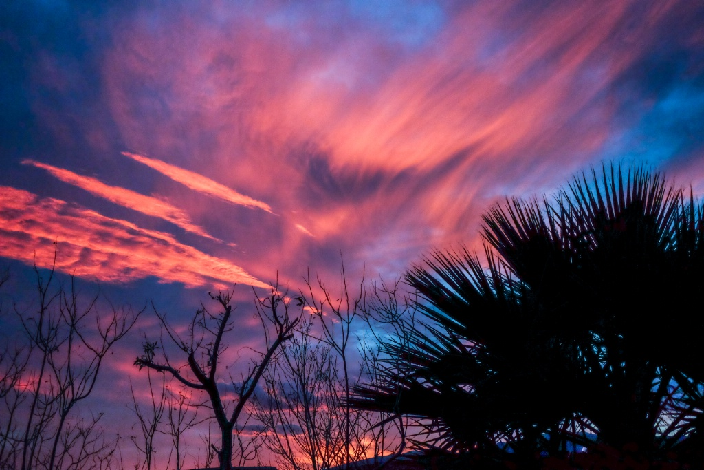brilliant, wispy clouds at sunset