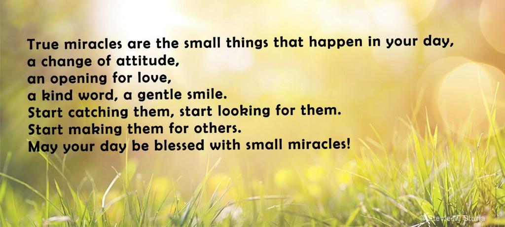 tru miracles