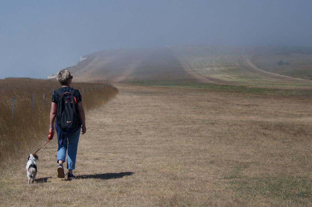 Stroll Fog rising