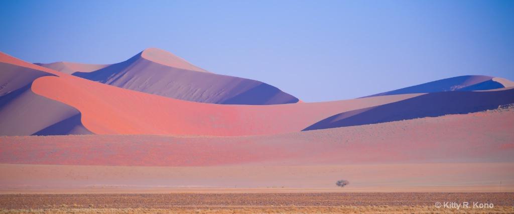 Sand Dunes of Sossuvlei
