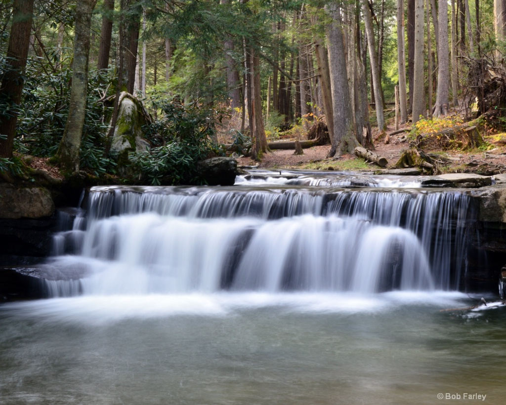 tolliver falls swallow falls state park md 4.JPG