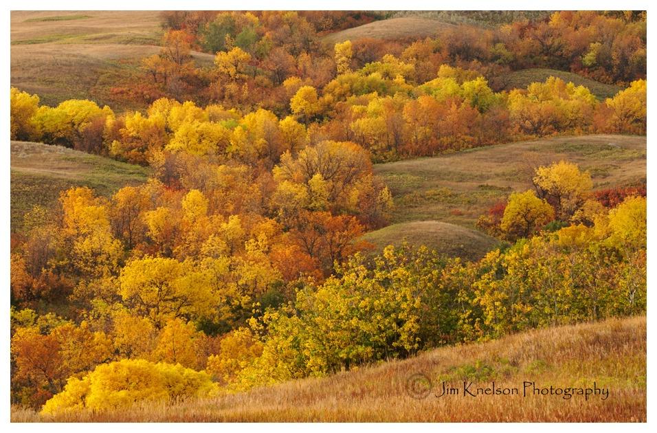 Qu'Appelle Valley 2018 Saskatchewan Autumn