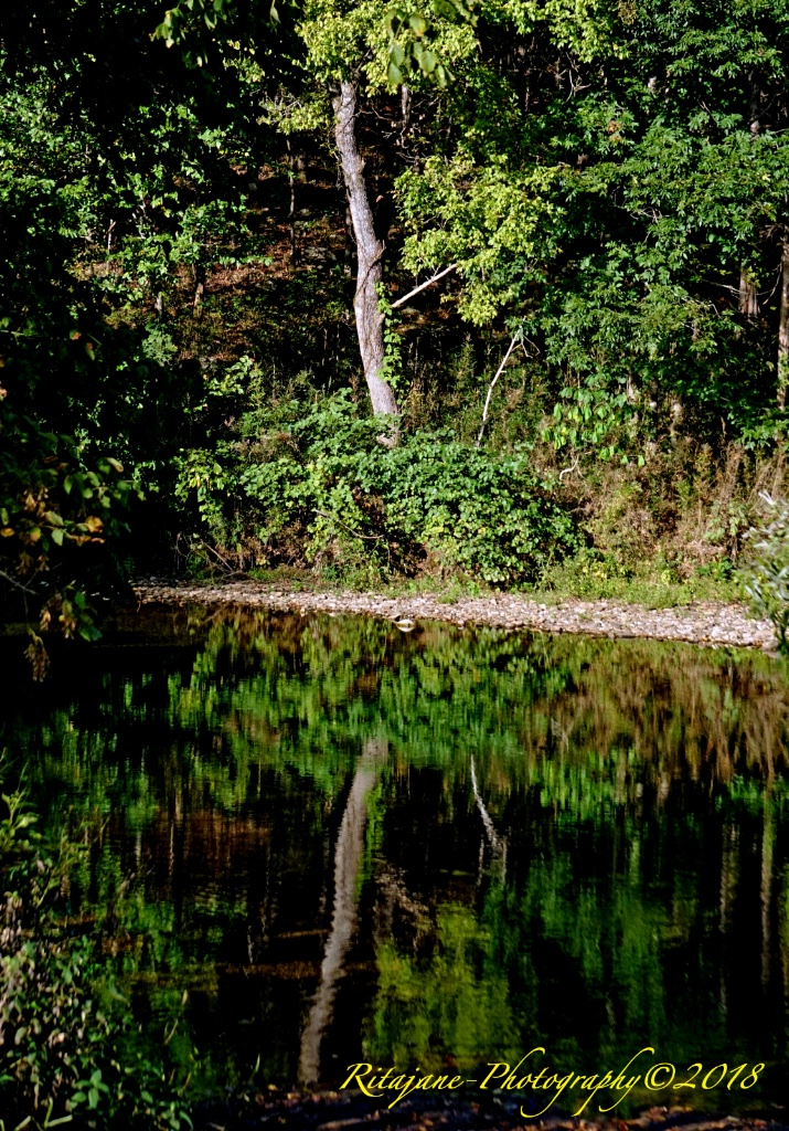 Reflections on the Buffalo River