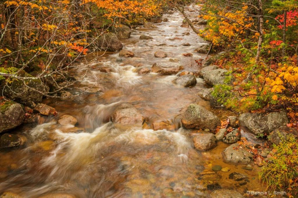 Sandy Stream