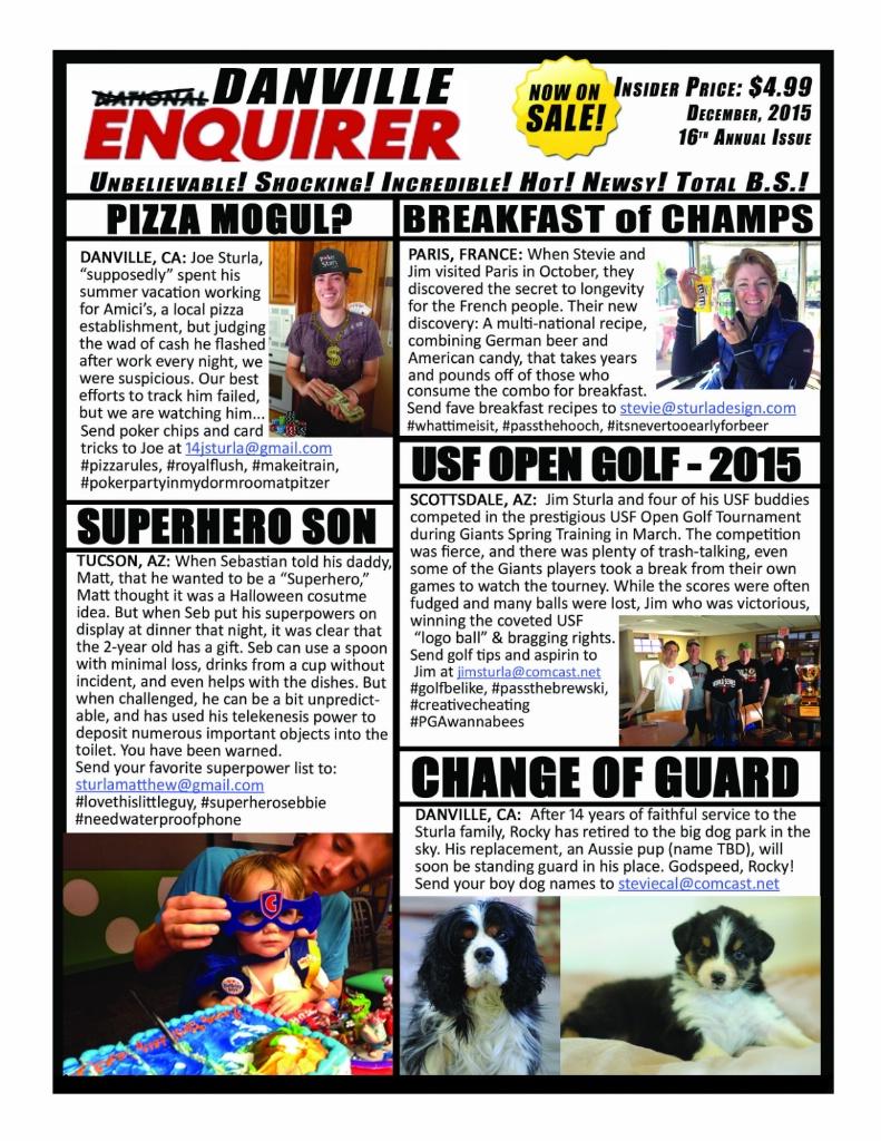 Danville Enquirer 2015 copy