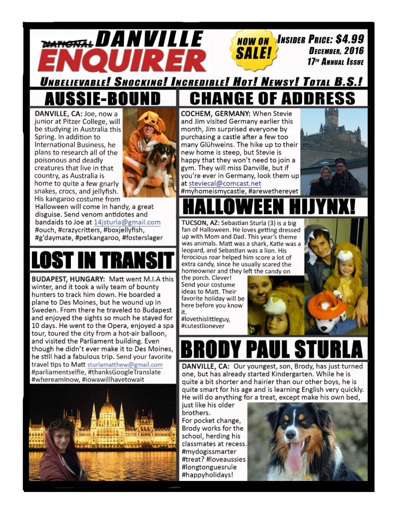 Danville Enquirer 2016