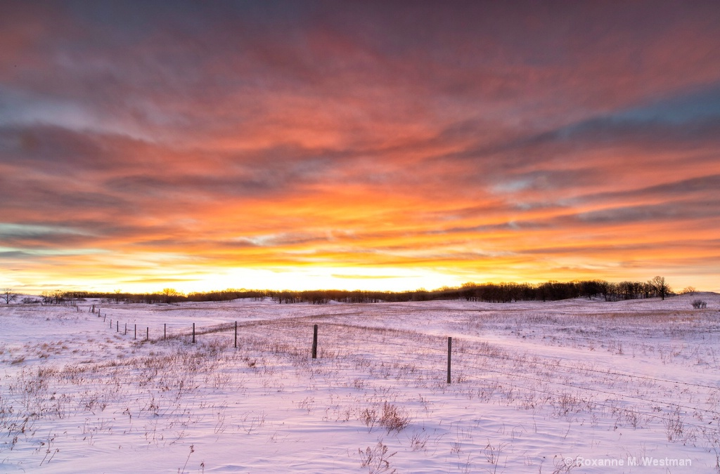 Winter sunrise in the grasslands