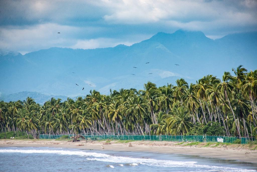 Mexican shoreline