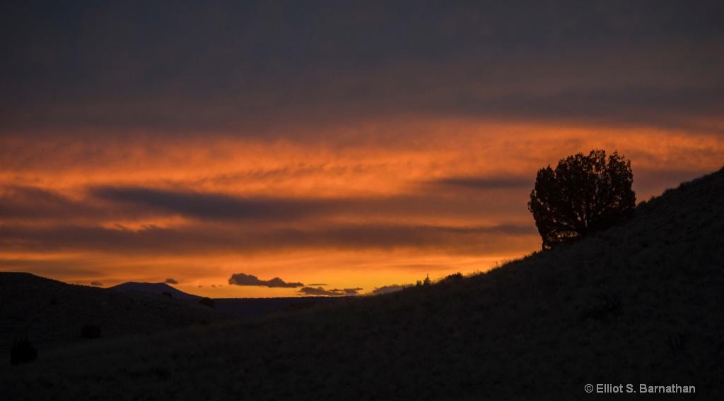 New Mexico 37