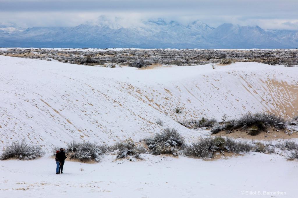 New Mexico 17