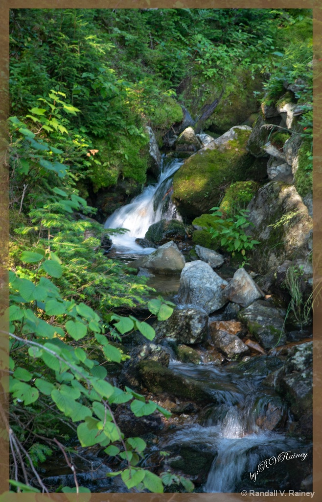 White Mtns little waterfalls . . .