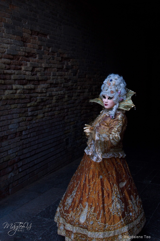 Carnevale di Venezia 2019 - Solo Series 2