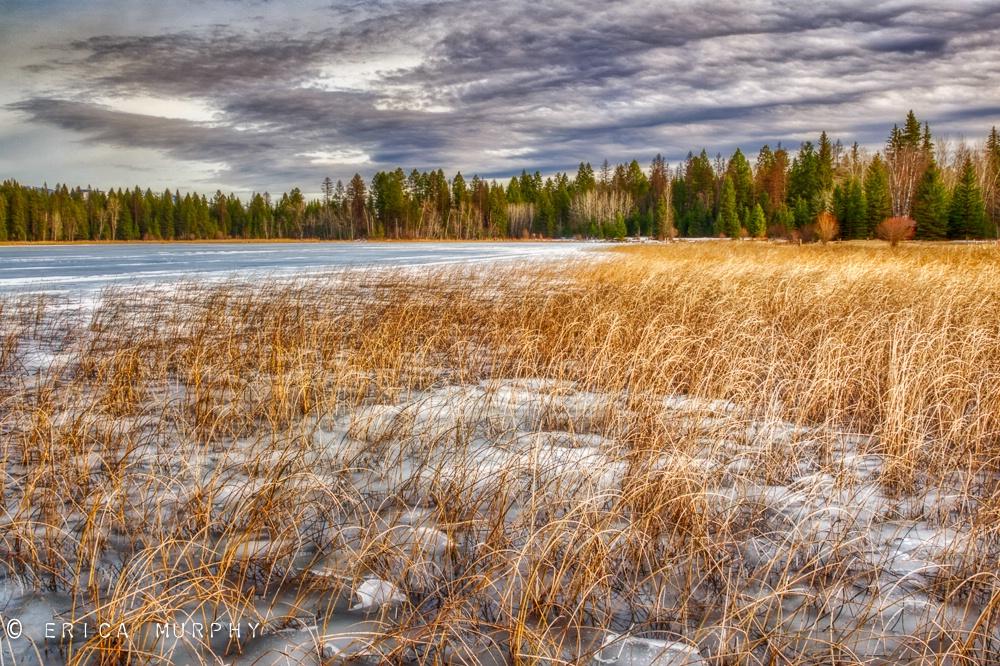 Early Spring at Blanchard Lake