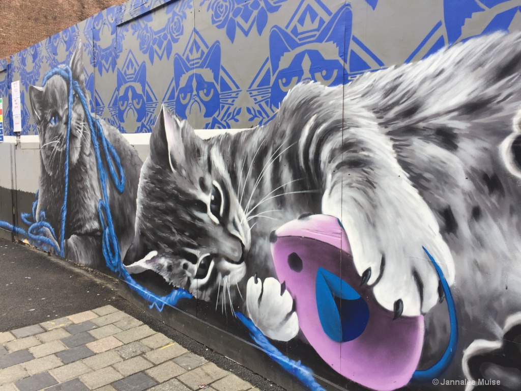 Glasgow Kitties