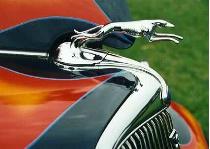 Greyhound Radiator Cap