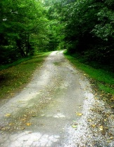 The Road To Nature