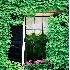 © Sharon E. Lowe PhotoID # 45942: Beacon Hill Window