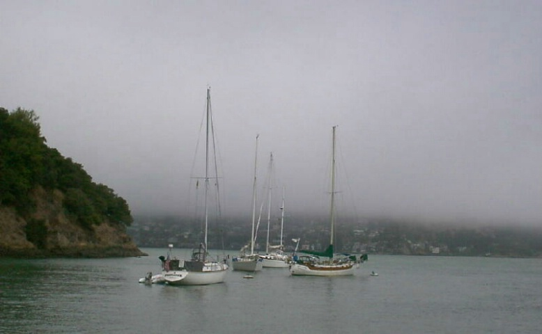 Fog and Boats