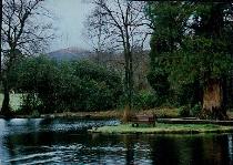 Lakeside at Craig-y Nos.