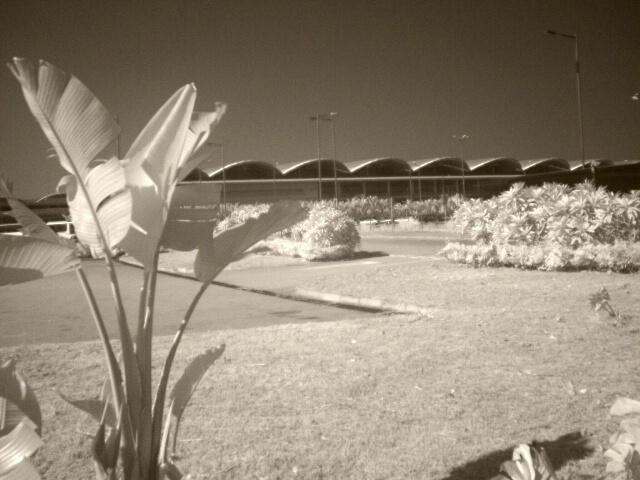 Landscape IR