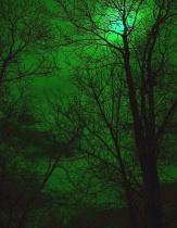 Green Moonglow
