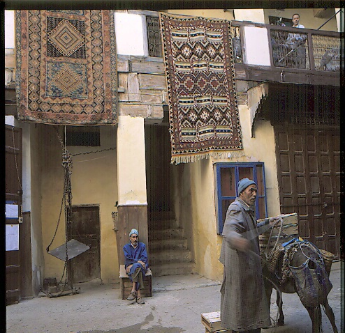 House with a donkey and man - ID: 64911 © Govind p. Garg