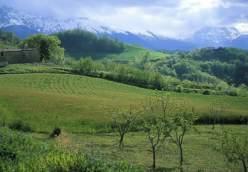 Green Valley and white mountain Abruzzo,Italy - ID: 65749 © Govind p. Garg